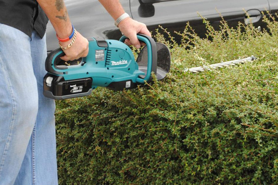 2019 Best Hedge Trimmer Reviews - Top Rated Hedge Trimmers