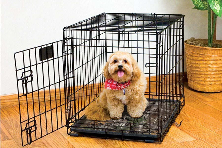 2019 Best Crate Mats Reviews Top Rated Crate Mats