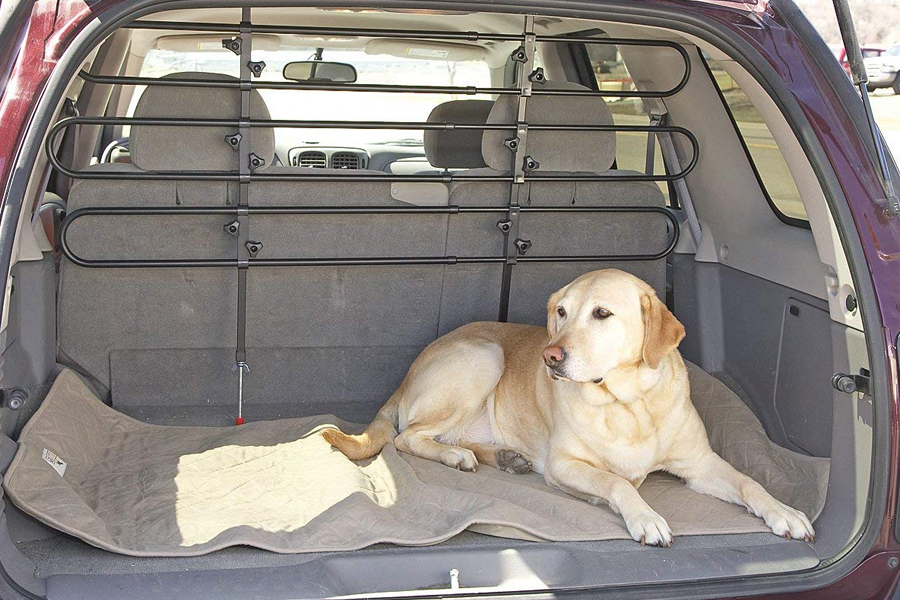 Pet Barrier For Cars - Goldenacresdogs.com