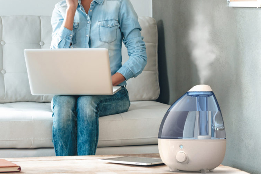 Humidifier vs Dehumidifier 2